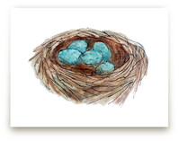 Bird's Nest by Haley Moore