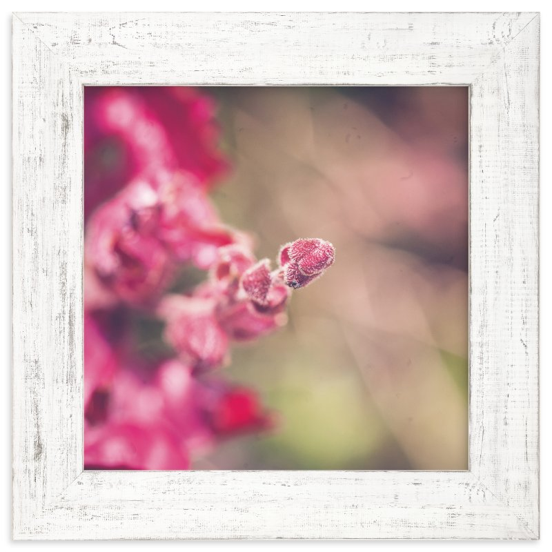 """""""Fuzzy"""" - Art Print by Smile Peace Love in beautiful frame options and a variety of sizes."""