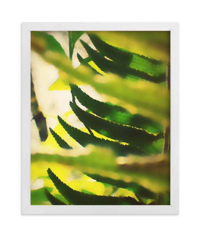 """Peekaboo Fern"" - Art Print by Lisa McLean in beautiful frame options and a variety of sizes."