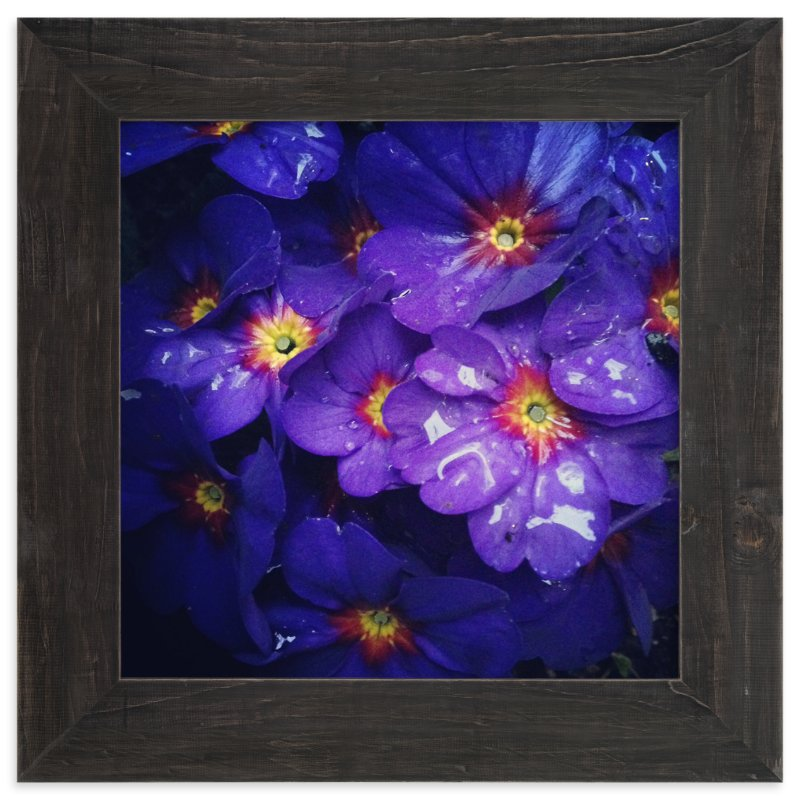 """""""Spring Noir 2"""" - Art Print by Sarah Johnson in beautiful frame options and a variety of sizes."""