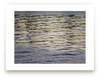 Dreaming in Water 1 by Jan Kessel