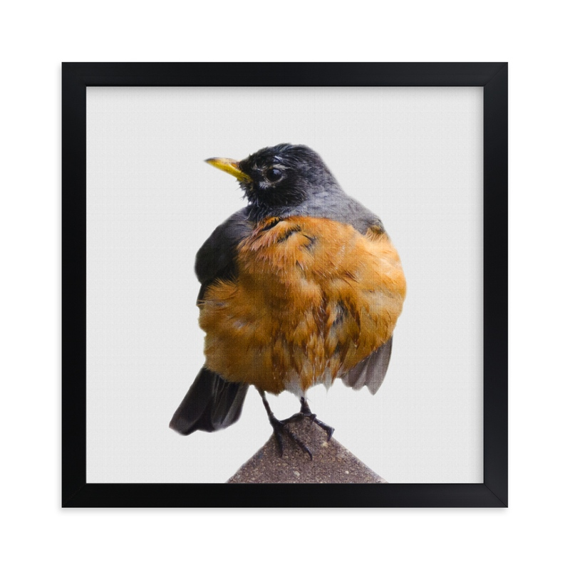 """""""Wet Bird"""" - Art Print by LemonBirch Design in beautiful frame options and a variety of sizes."""