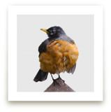 Wet Bird by LemonBirch Design
