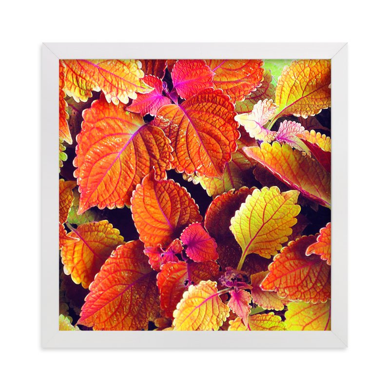 """""""Fall's Blush"""" - Art Print by Sarah Johnson in beautiful frame options and a variety of sizes."""