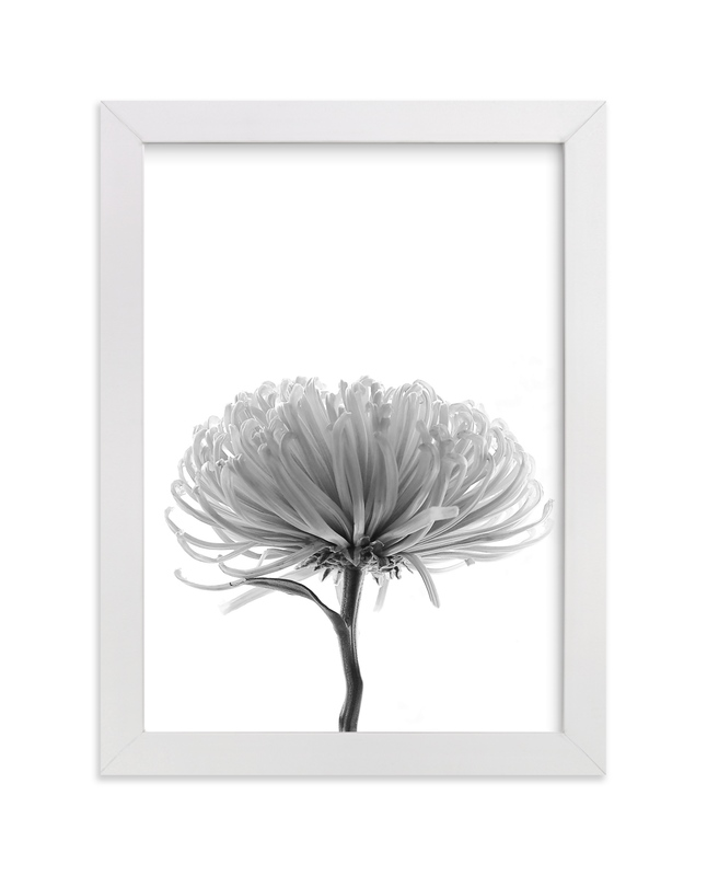 """""""In my Window"""" - Art Print by LemonBirch Design in beautiful frame options and a variety of sizes."""