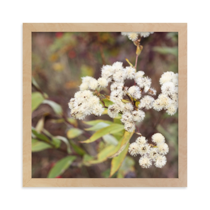 """""""Fuzzy Wildflowers"""" - Art Print by Gray Star Design in beautiful frame options and a variety of sizes."""