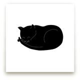 Morning Cat Nap