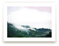 Panama Fog