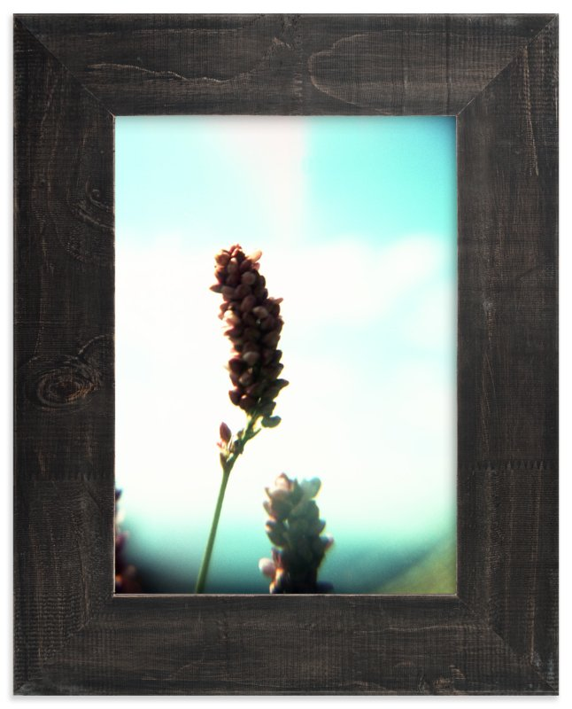 """""""Virginia Flora"""" - Art Print by Meghan Quinn in beautiful frame options and a variety of sizes."""