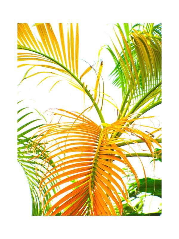 Contemporary Miami Wall Art Embellishment - All About Wallart ...