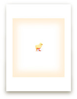 Baby Chick by hadley hutton