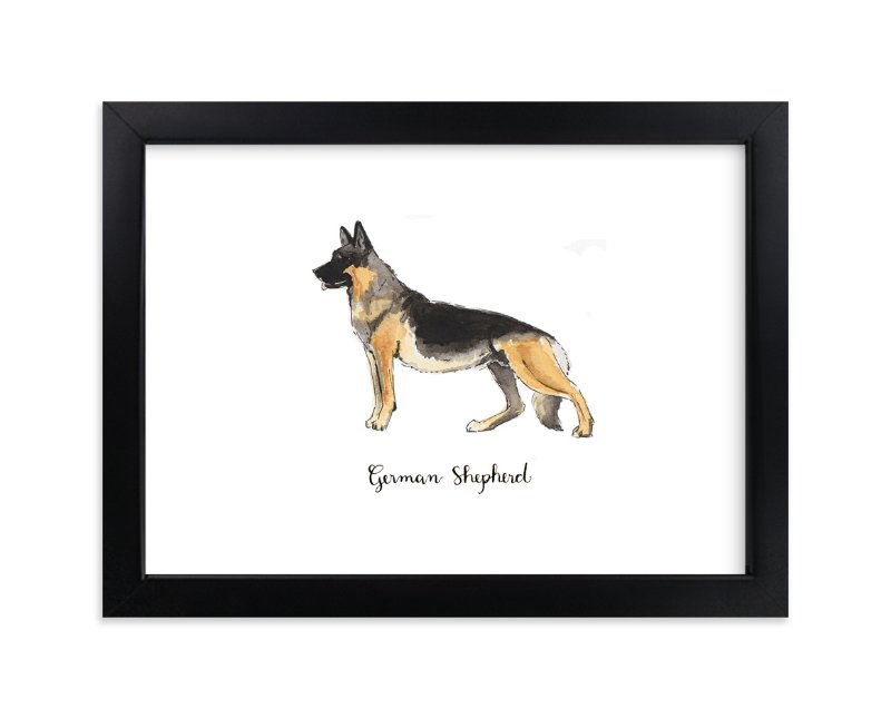 """German Shepherd"" - Art Print by Megan Kelso in beautiful frame options and a variety of sizes."
