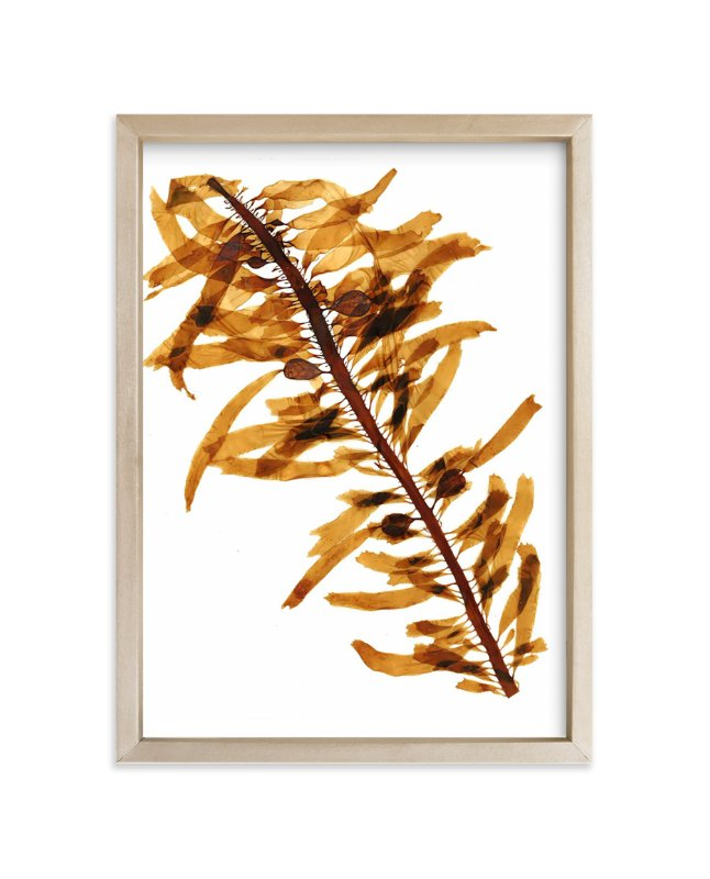 """kelp print 001"" - Art Print by aeryn donnelly design in beautiful frame options and a variety of sizes."