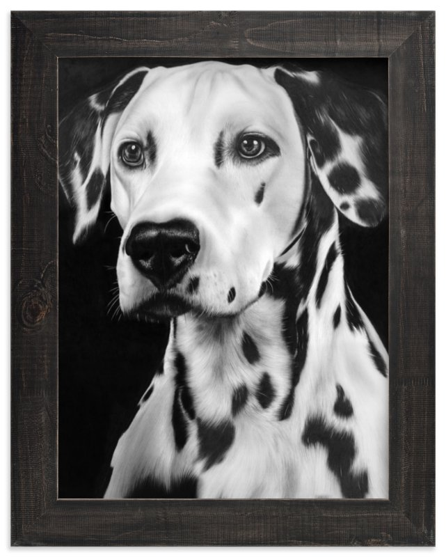 """""""Dalmation"""" - Art Print by Jerry Winick in beautiful frame options and a variety of sizes."""