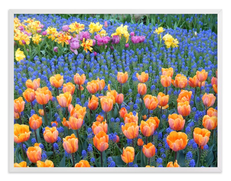 """Pretty Garden 3"" - Art Print by Jan Kessel in beautiful frame options and a variety of sizes."