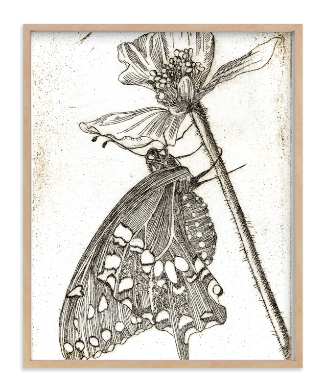 """""""Papillon et Papaver"""" - Art Print by Stephanie Toral in beautiful frame options and a variety of sizes."""