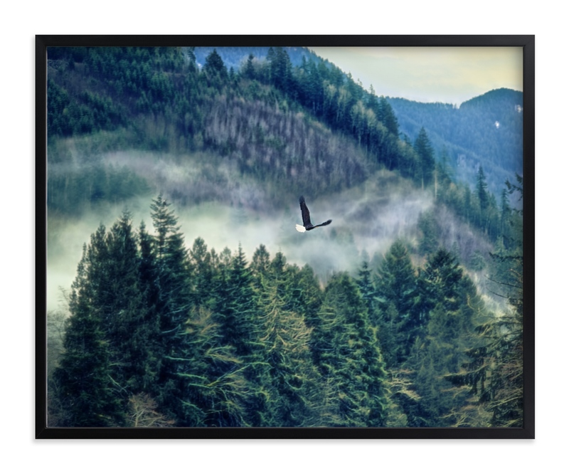 """Soaring"" - Art Print by Michelee Scott in beautiful frame options and a variety of sizes."