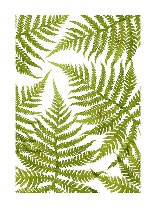 Watercolor Fern Leaves Wall Art Prints by Helga Wigandt | Minted