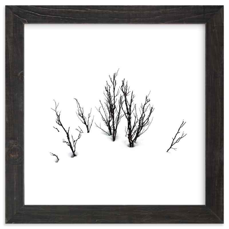 """""""Deep in snow"""" - Art Print by LemonBirch Design in beautiful frame options and a variety of sizes."""
