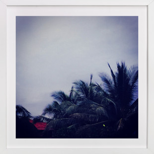 Palm Tree Dusk  Art Print