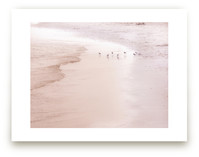 Eight Birds by the Sea by Celia Maria