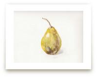 Single Pear by Melinda Denison