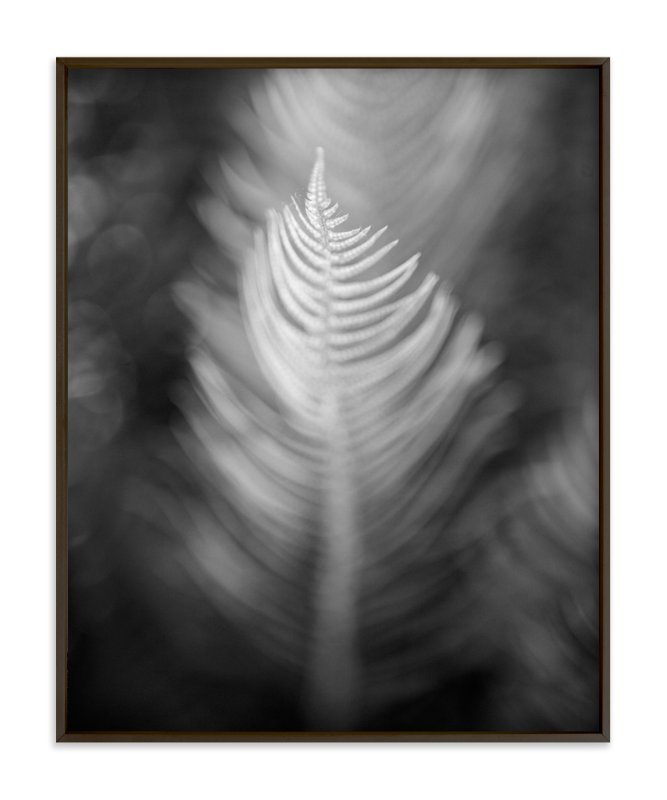 """Soft Feathers"" - Art Print by Lynn Lehto in beautiful frame options and a variety of sizes."