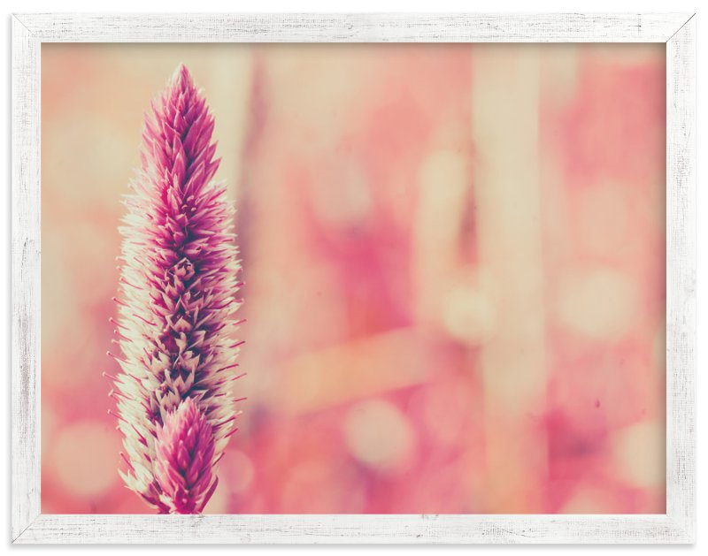 """Fuchsia Study 3"" - Art Print by Smile Peace Love in beautiful frame options and a variety of sizes."