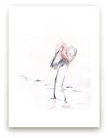 Reddish Egret by Annie Moran