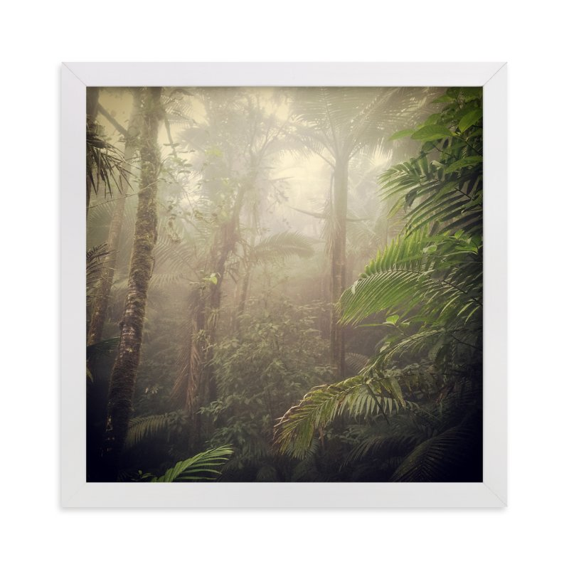 """Rainforest extravaganza 1"" - Art Print by Aimee Siberon in beautiful frame options and a variety of sizes."