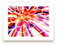 Colorburst1 by Miranda Mol