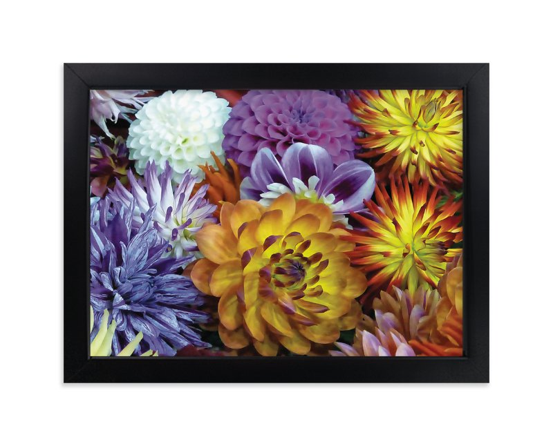 """""""Dahlia Mix"""" - Art Print by A Maz Designs in beautiful frame options and a variety of sizes."""