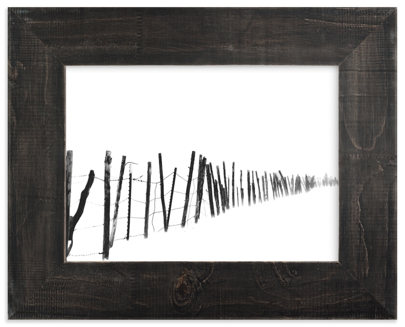 """Barb Wire"" - Art Print by Leslie Le Coq in beautiful frame options and a variety of sizes."