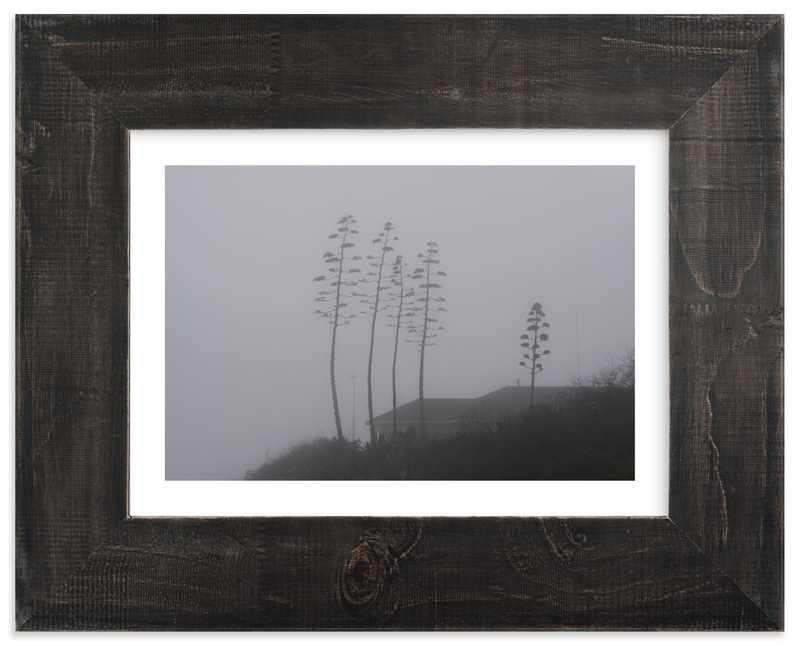 """Century Fog"" - Art Print by Becky Nimoy in beautiful frame options and a variety of sizes."