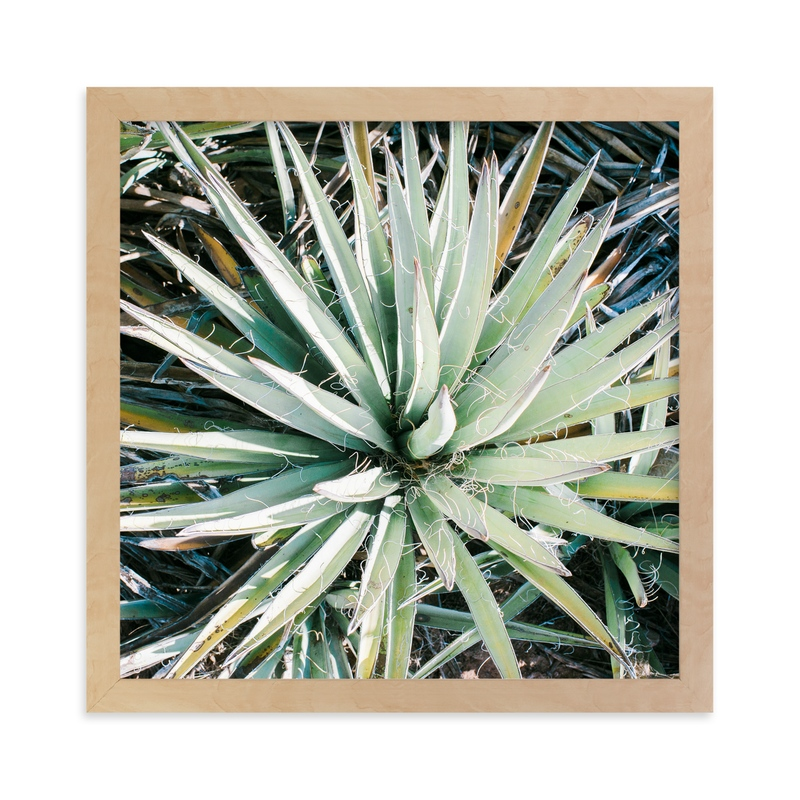 """Desert Fauna"" - Art Print by Anna Western in beautiful frame options and a variety of sizes."