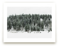 A Winter Story by Jenni Kupelian