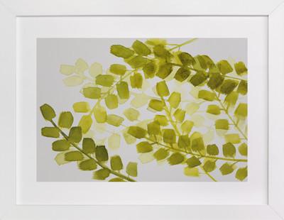 Splendid Ferns  Art Print