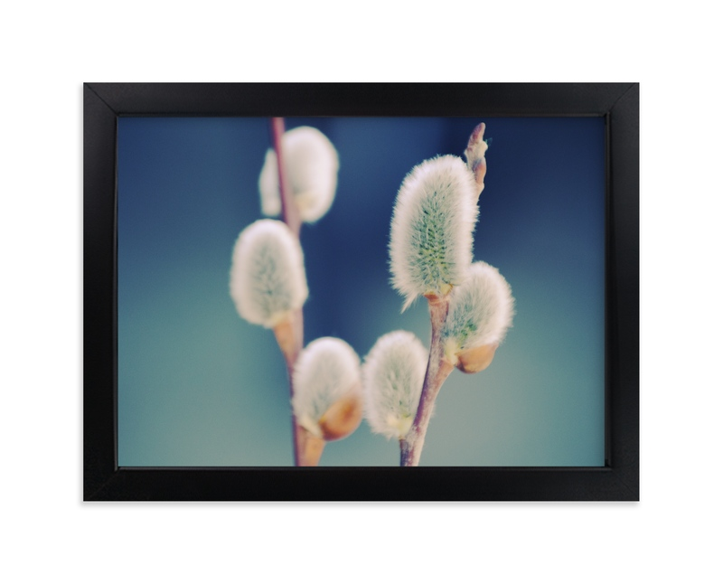 """""""Catkins"""" - Art Print by LemonBirch Design in beautiful frame options and a variety of sizes."""