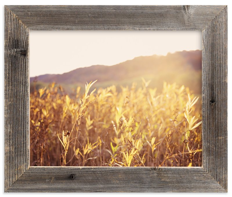 """""""River Warmth"""" - Art Print by Erin Niehenke in beautiful frame options and a variety of sizes."""