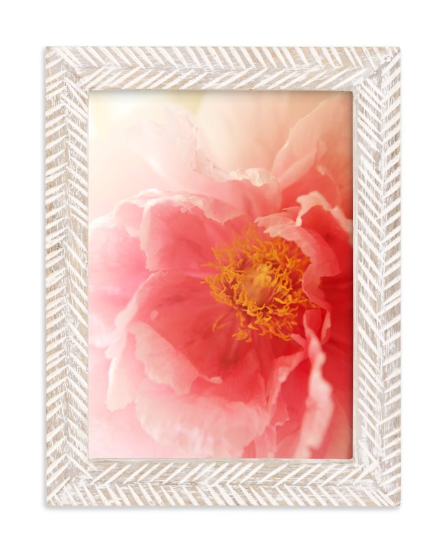 """""""Garden Peony"""" - Art Print by Robin Ott in beautiful frame options and a variety of sizes."""