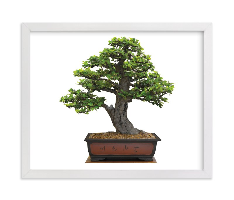 """bonsai"" - Art Print by aticnomar in beautiful frame options and a variety of sizes."