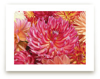 Anemone looking Dahlias by Mazing Designs