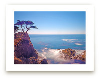 VView from Pebble Beach Wall Art Prints