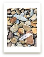 Beach Feather by Misty Hughes