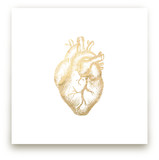 Heart of Gold. by hey paper moon