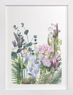 botanical arrangements  Art Print