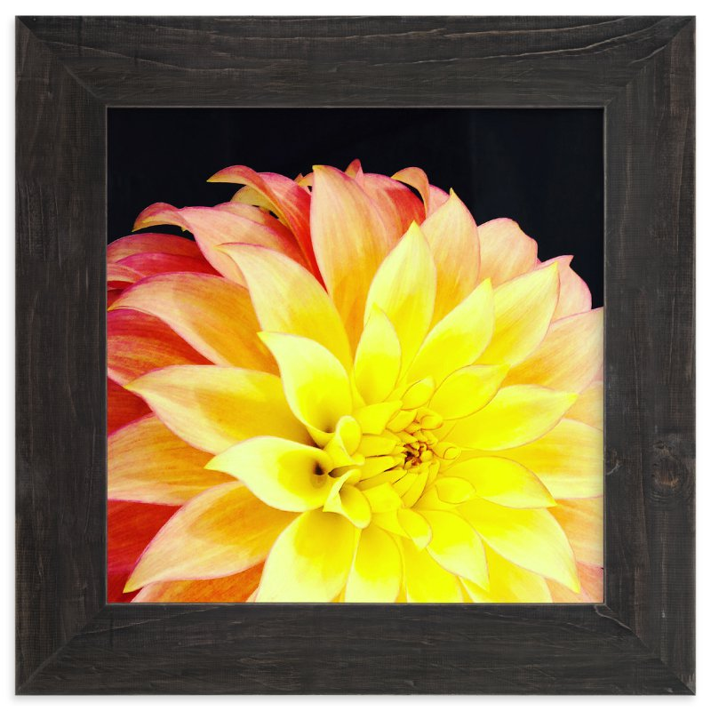 """""""Spring Noir 9"""" - Art Print by Sarah Johnson in beautiful frame options and a variety of sizes."""