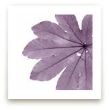 Leaf in Lilac