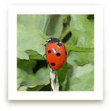 Lady Bug One by Margaret Williams