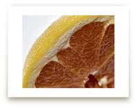 Juicy Grapefruit by Jennifer Mckinnon Richman